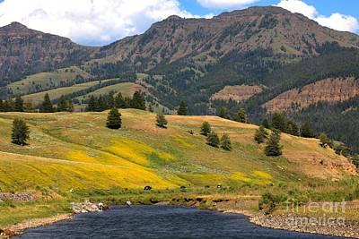 Lamar River Photograph - Lamar Valley Paradise by Adam Jewell