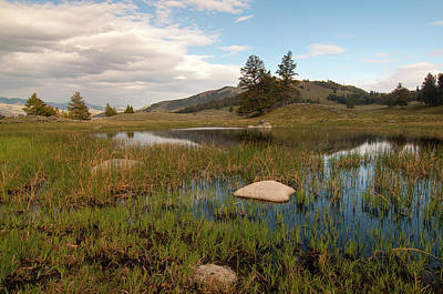 Photograph - Lamar Valley Pond by Steve Stuller