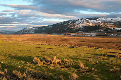 Photograph - Lamar Valley by Steve Stuller