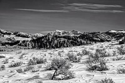 Absaroka Photograph - Lamar Valley - Yellowstone by L O C