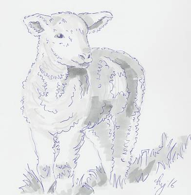 Drawing - Lamb Drawing Using Marker Pen by Mike Jory