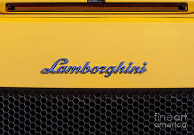 Photograph - Lamborghini by David Millenheft