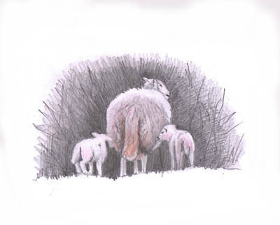 Painting - Lambs Following by Helen White