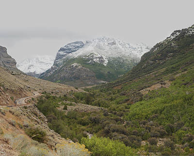 Art Print featuring the photograph Lamoille Canyon by Daniel Hebard