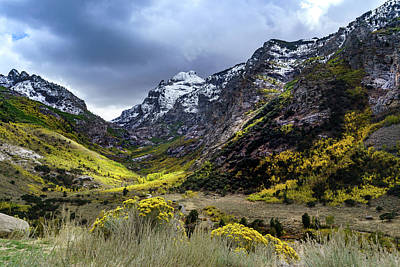 Photograph - Lamoille Canyon In Fall by Janis Knight