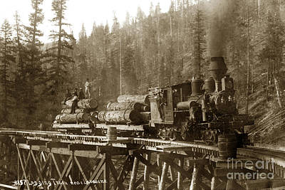 Photograph - Lamoine Lumber And Trading Co. No. 1 Circa 1907 by California Views Mr Pat Hathaway Archives