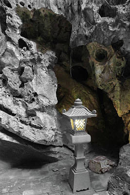 Photograph - Lamp In Marble Mountain by Samantha Delory