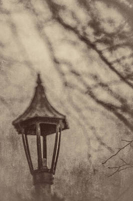 Photograph - Lamp In Winter W Tree Branches by YoPedro