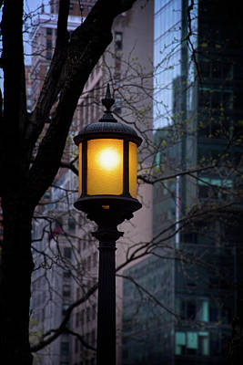 Photograph - Lamp Light by Mark Andrew Thomas