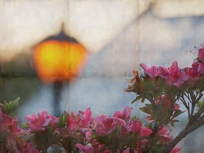 Photograph - Lampe Au Jardin by Patricia Strand