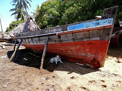 Lamu Island - Dog In The Shade Of Wooden Fishing Dhow Art Print