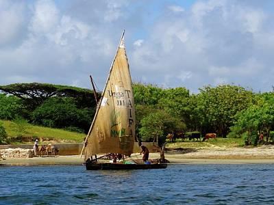 Lamu Island - Taifa - Wooden Fishing Dhows Off Lamu Island - Colour Art Print
