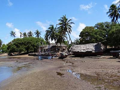 Lamu Island - Wooden Fishing Dhows And Village At Rear 1 Art Print