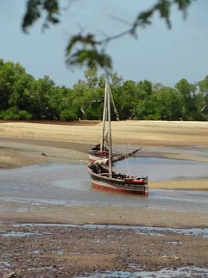 Exploramum Photograph - Lamu Island - Wooden Fishing Dhows At Low Tide 1 by Exploramum Exploramum