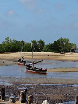 Lamu Island - Wooden Fishing Dhows At Low Tide With Pier - Colour Art Print