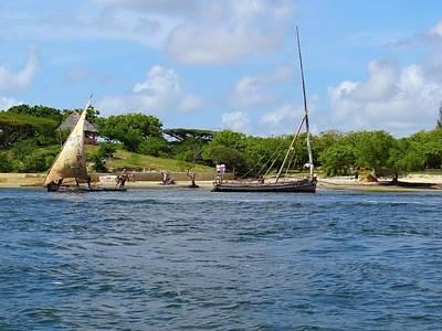 Exploramum Photograph - Lamu Island - Wooden Fishing Dhows In The Distance by Exploramum Exploramum