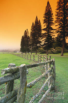 Lanai, City View Art Print by Ron Dahlquist - Printscapes