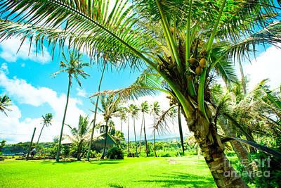 Photograph - Lanakila 'ihi'ihi O Iehowa O Na Kaua Church Wailua Nui Keanae Maui Hawaii by Sharon Mau