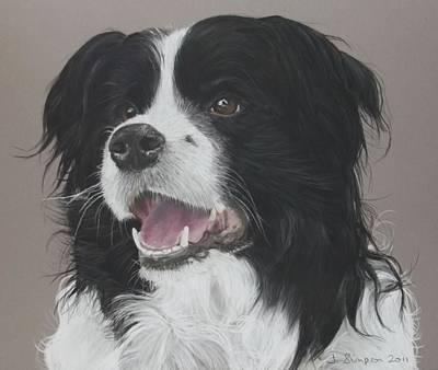 Pastel Pet Portrait Pastel - Lance by Joanne Simpson