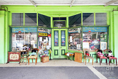 Photograph - Lanchoo Or Bushells? by Linda Lees