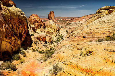 Photograph - Land Of Sandstones Valley Of Fire by Frank Wilson