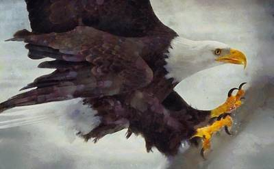 Eagle Painting - Land Of The Brave By Pierre Blanchard by Pierre Blanchard