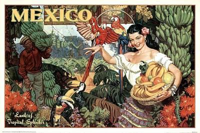 Parrot Mixed Media - Land Of Tropical Splendor, Mexico - Retro Travel Poster - Vintage Poster by Studio Grafiikka