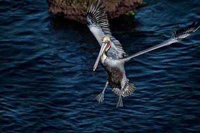 Photograph - Landing 2 by James David Phenicie