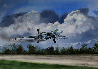 Painting - Landing In The Dusk by Steve Jones