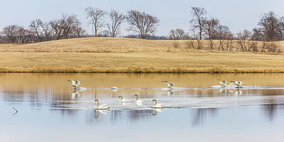 Photograph - Landing Party by Penny Meyers