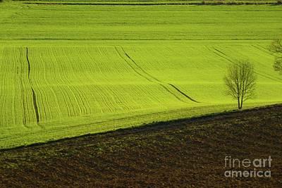 Photograph - Landscape 4 by Jean Bernard Roussilhe