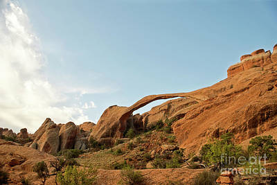 Photograph - Landscape Arch by David Arment