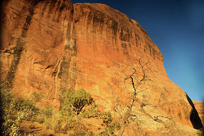Photograph - Landscape Arch Trail by Kunal Mehra