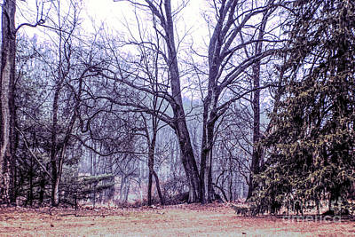 Photograph - Landscape At Old Kennett Meetinghouse by Sandy Moulder