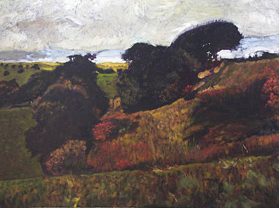 Landscape At Rhug Art Print by Harry Robertson