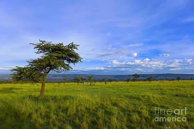 Kenya Digital Art - Landscape by Charuhas Images