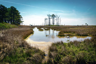 Photograph - Landscape - Hooper's Island by Brian Wallace