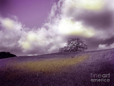Landscape In Purple And Gold Art Print by Laura Iverson
