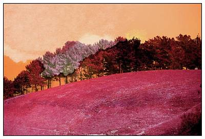 Landscape In Red Art Print