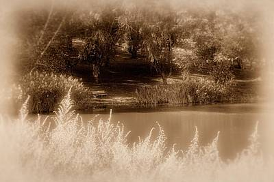 Photograph - Landscape In Sepia by Angie Tirado