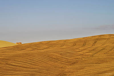 Photograph - Landscape In Tuscany by Ivan Slosar