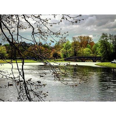 Landscape_lover Photograph - #landscape #landscape_lover by Alice Catherine Carter