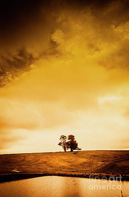 Water Filter Photograph - Landscape Of Country Gold  by Jorgo Photography - Wall Art Gallery