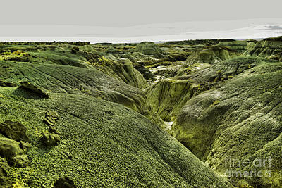Photograph -  Landscape Of The Bisti by Jeff Swan