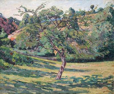 Landscape Of The Creuse Art Print by Armand Guillaumin