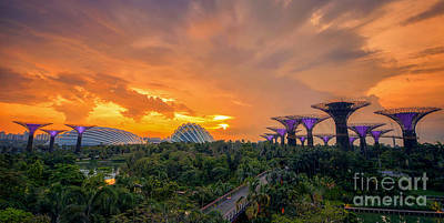 Landscape Of The Singapore With The Garden By The Bay Art Print by Anek Suwannaphoom