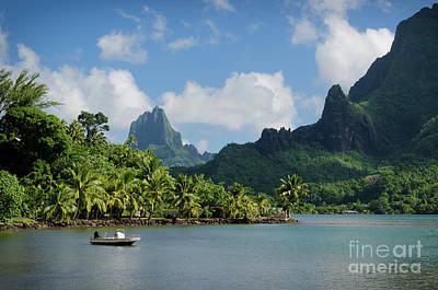 Photograph - Landscape On Green Moorea by IPics Photography