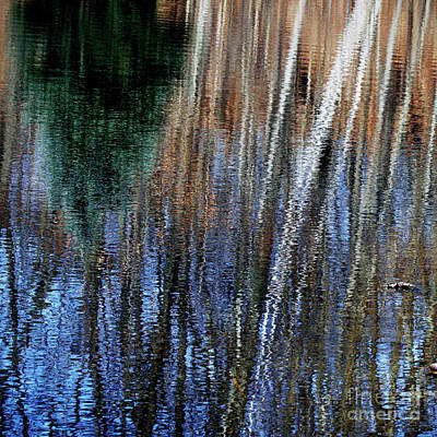 Photograph - Landscape Reflections Wall Art Decor by Carol F Austin