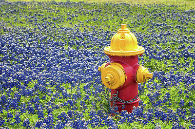 Photograph - Landscape Version Of The Fire Hydrant In The Bluebonnets by Victor Culpepper