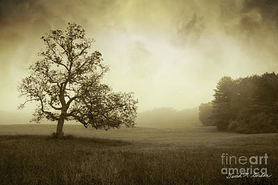 Montage Photograph - Landscape With Oak Tree And Clouds by Dave Gordon